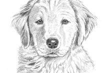 Kalem çizimler - Dostlarımız
