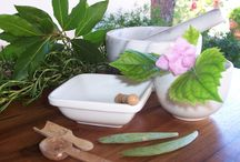 Homeopathic approaches / 'Summer 2015' of Clever H., different approaches to homeopathy