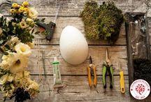 Wielkanoc jajko z mchu