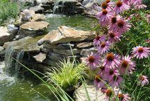 Water Garden Terasse