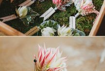 Protea Floral Arrangements / Proteaceae used in stunning ways in floral arrangements