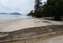 Ko Samui Properties - Beach Land For Sale / List of beach land available through Ko Samui Properties