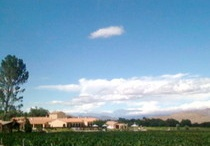 Our Wineries / A selection of photographs of wineries located throughout Argentina's wine regions: the North, Cuyo and Patagonia.