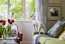 Refurbished House / Moving on...