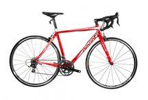 Vélo de route / road bike