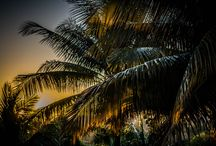 Sunrise and sunset / il giorno comincia...il giorno finisce