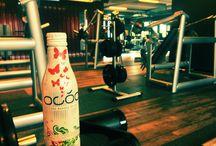 OCÓO Sports / OCÓO - The Beauty Drink isotonic, regenerativ, revitalize