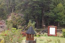 Flores del sur de Chile / Un hermoso lugar