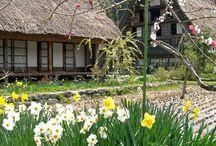 ✿⊱ Giappone: case e vita quotidiana ✿⊱