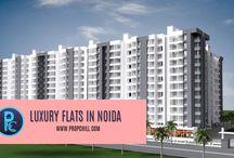 luxury flats in Noida