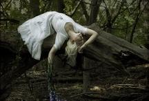 Amy Ballinger Photography