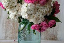 *flowers...*