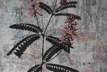 Medizinalpflanzen / Medizinalpflanzen