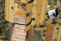construction pulailler