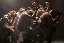 Dance Projects / The Collection commissions dance shows, in collaboration with I Teatri Fondazione of Reggio Emilia - Festival Aperto.