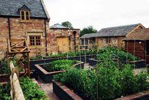 Garden Design / Landscape Architect showcasing garden designs and built projects.