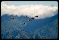 Aviation / Aviation Photography