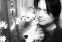櫻井さん と にゃんこ / 猫カフェ   猫 猫 猫   キャッキャッキャッ♫
