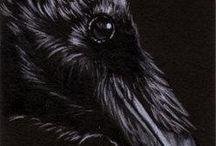 Crow art / Crows by Sandrine Curtiss