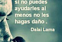 Dalai ♡