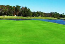 Lansbrook Golf