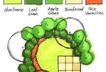 rendering landscape plan