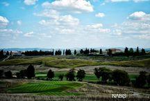 FLORALIADECOR: Emotions in Tuscany / #Floraliadecor #LocationCastiglionDelBosco #September2014 #PlanningWww.wedinitaly.co.uk #PhotographyNabis