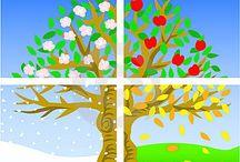 négy évszak fa