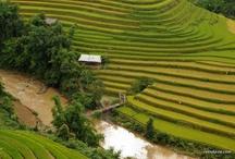 Destination Vietnam / Petit florilège des plus belles destinations pour bien préparer votre voyage au Vietnam