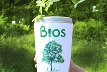 Biodegradable Urns / A Range of Environmentally-Friendly and Biodegradable Urns