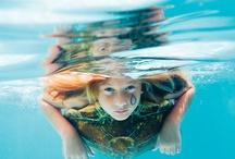 Underwater Photography / by Fj Eli
