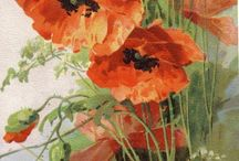 Poppies / Poppies in watercolor