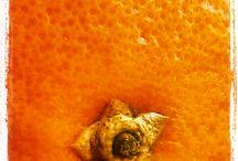 FOTO / arancia