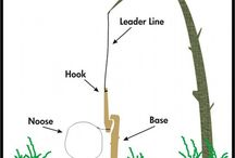 Prepper Hunting Trapping / Hunting and trapping, etc, tips and tricks.