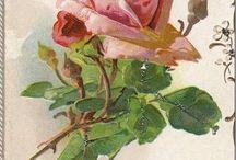 Flowers / All kinds of flower art
