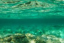 Be water / Lycra prints for woman swimwear