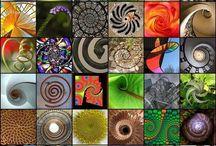 Fibonacci Piral.