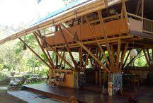 竹の家 Bamboo house