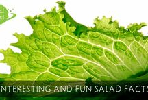 Salad Fun