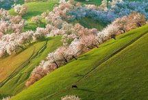 Nature&Landscapes
