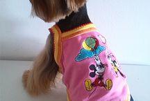 Ropa para perros Yorkshire Terrier, Chihuahuas, Caniche Toy, Chino Crestado, minis / Ropa y accesorios divertidos para razas mini. Envios a toda españa e internacional. Muy econòmicos. www.petitpetz.com