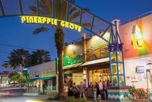 Pineapple Grove District / by Delray Beach DDA