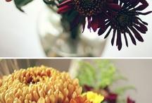 Garden Ideas / by Andrea Cunningham