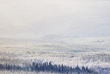 Woodland / by Little Karstar