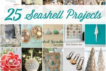 Seashell projects