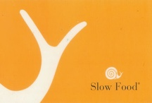 Go Slow / what slows one down: what nourishes: what sustains: