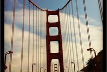 Bridges  / by Renata Barboza-Murray