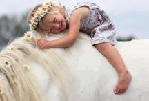 Equine Dreams ~ / millymayamelia.wordpress.com ~ they lend us wings so we may fly ~ inspirational equines ~ country life amongst healing horses ~