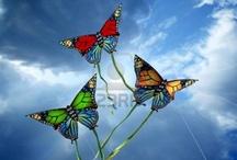 Kites & Hot Air Balloons / by Debbie Jennings Hewitt