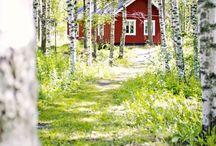 Swedish or Scandinavian nature & countryside